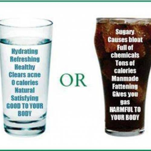 WATER AND NUTRITION